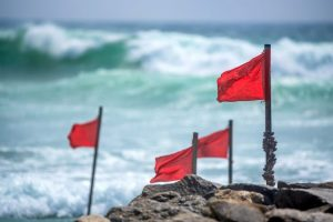 Red Flags You Can Easily Spot With A Credit Check