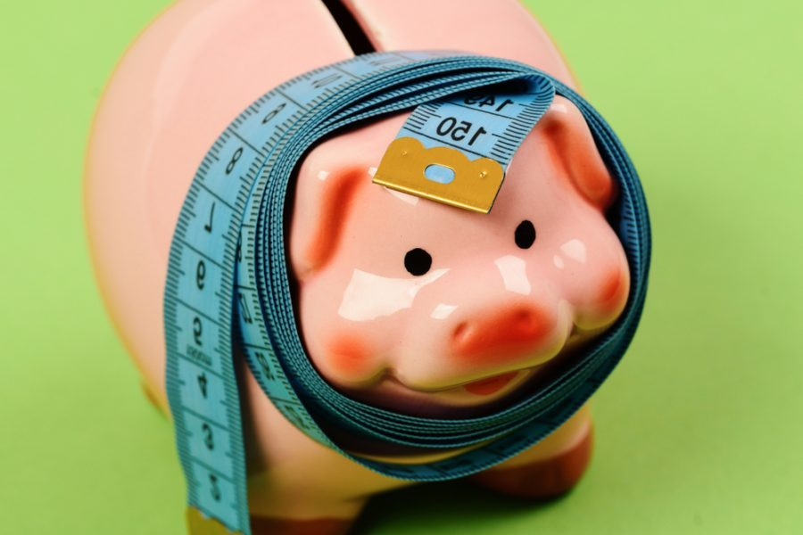 Tips On How To Use Short Term Loans No Credit Check Wisely